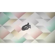 Metal clip, Nissan